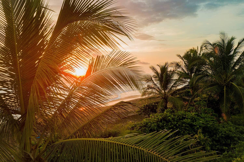 Eine Reise nach Costa Rica Online Reisebüro webook.ch