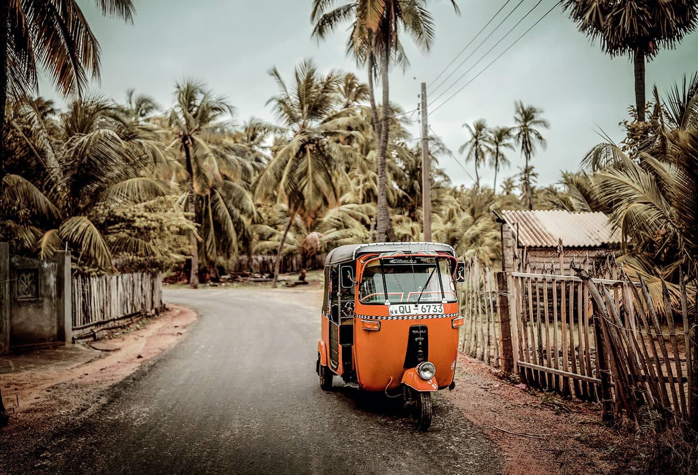 Sri Lanka Reise Online Reisebüro webook.ch