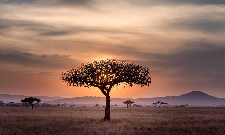 #wecook: Ferienfeeling im Glas aus Südafrika
